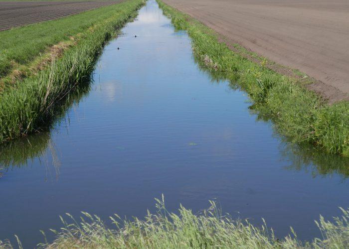 -drie polders-